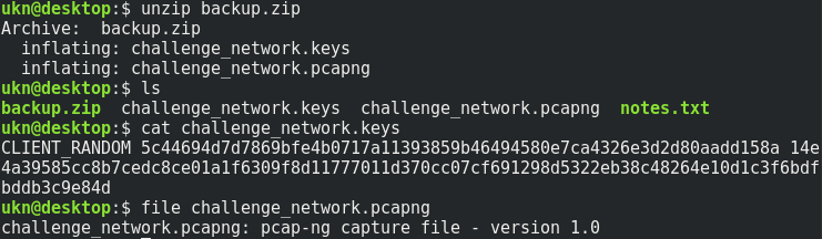 Write Up : Sogeti Quals 2019 - N3tC4p (FORENSICS) · UKN